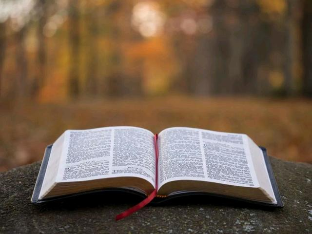 What Does It Mean to Dream about The Bible!