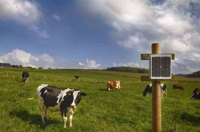 Top 16 Farm Dream Interpretation-Dream Meaning