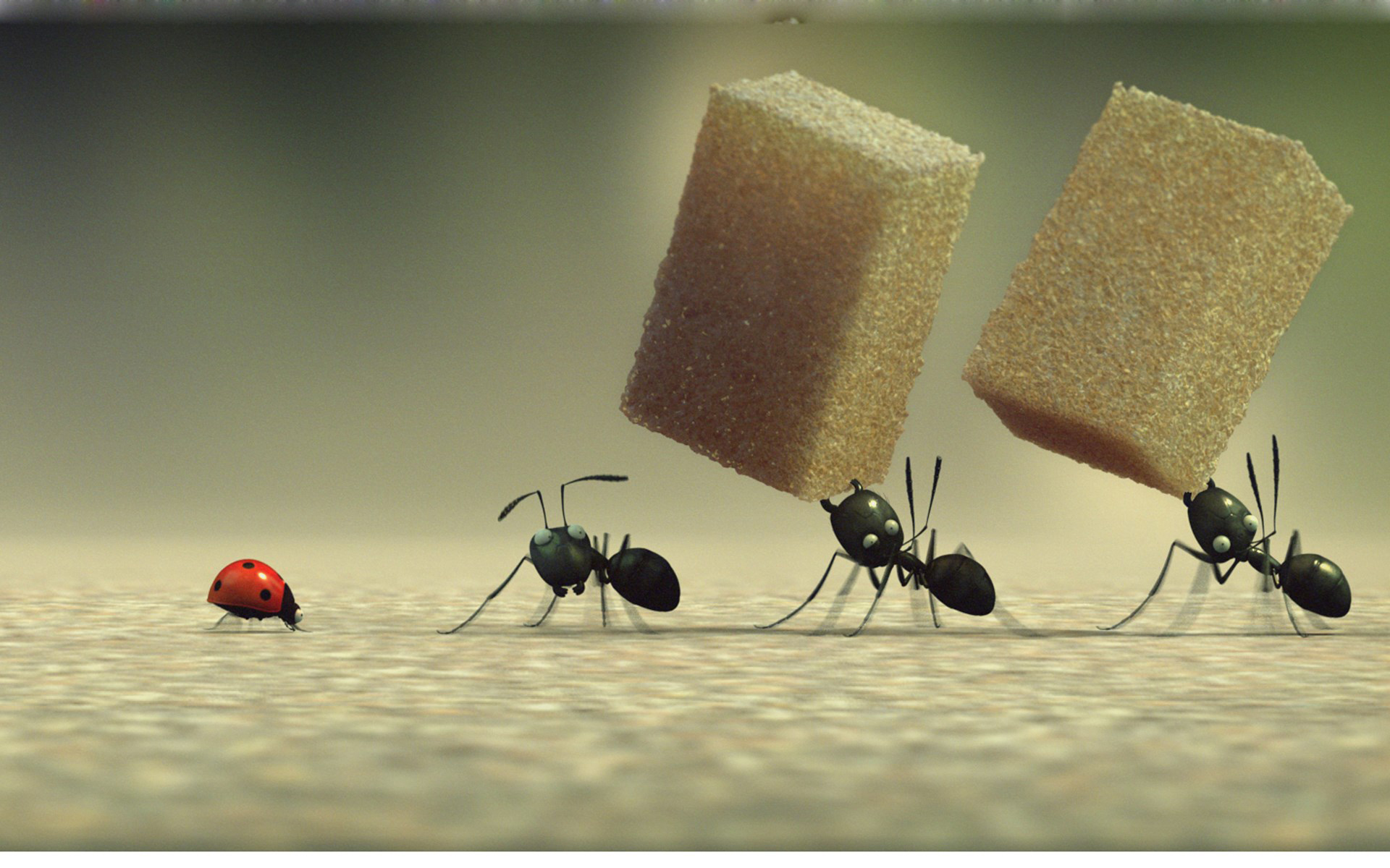 What Does It Mean to Dream of Ants? -Dream password
