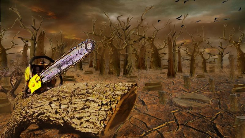 #16 Dream Of Cutting Trees-Dream Meaning and Interpretation