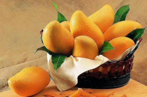 23# Dream About Mango-Dream Meaning and Interpretation