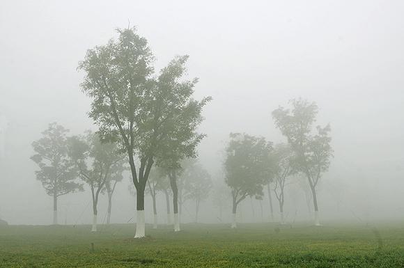 Top 16 Foggy Dreams Interpretation-Dream Meaning and Symbol