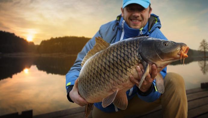What Does The Big Fish Symbolize in Dream?-Dreams Interpretation