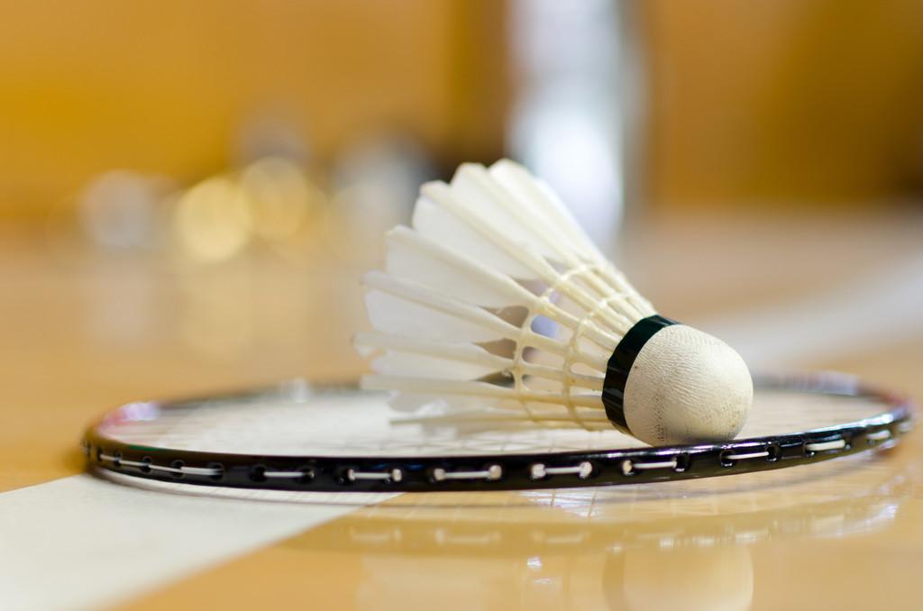 What Does It Mean to Dream of Badminton?-Dreams Interpretation Online