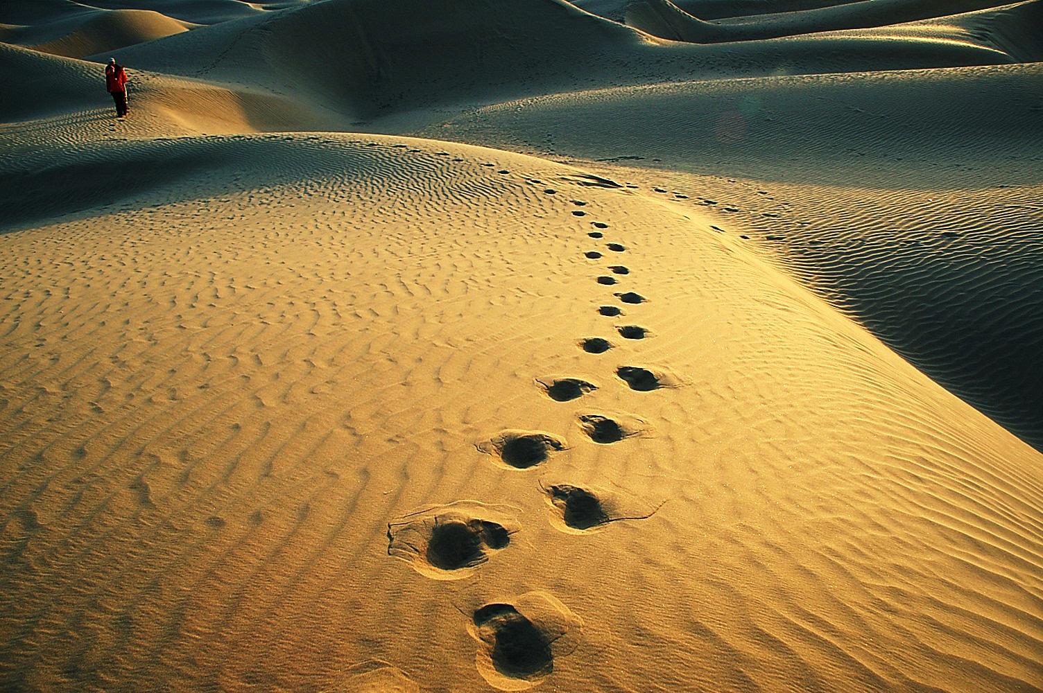 Top 13 Footprint Dreams Interpretation-Dream Meaning And Symbol