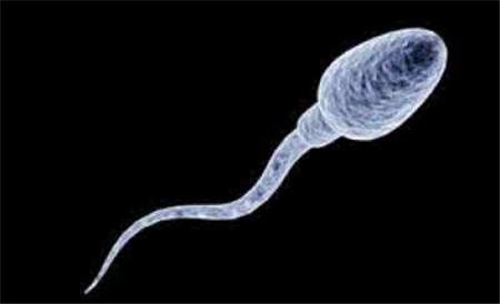 Why Do I Dream About Sperm?-Dreams Interpretation Online