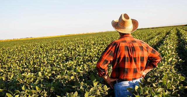 Top 17 Farmer Dreams Interpretation-Dream Meaning And Symbol