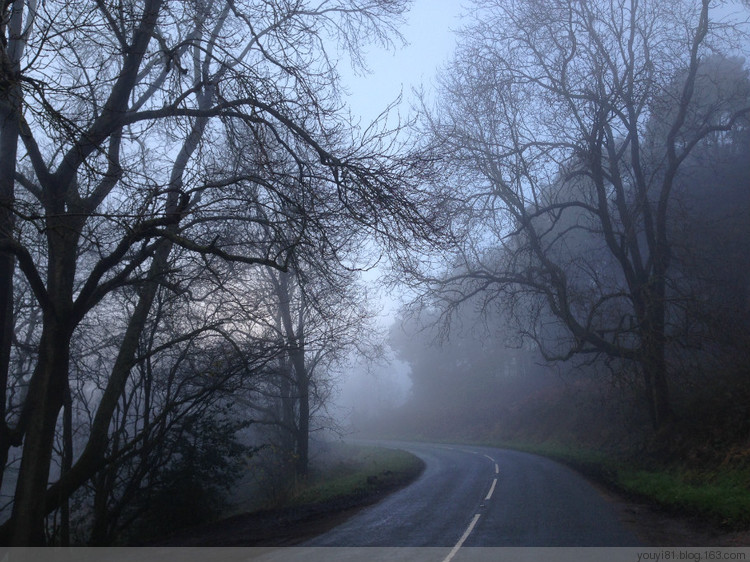 Why Do You Dream Of Being Surrounded By Fog?-Dreams Interpretation