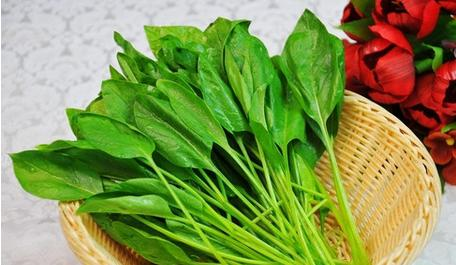 What Does It Mean to Dream about Spinach?-Dreams Interpretation Online