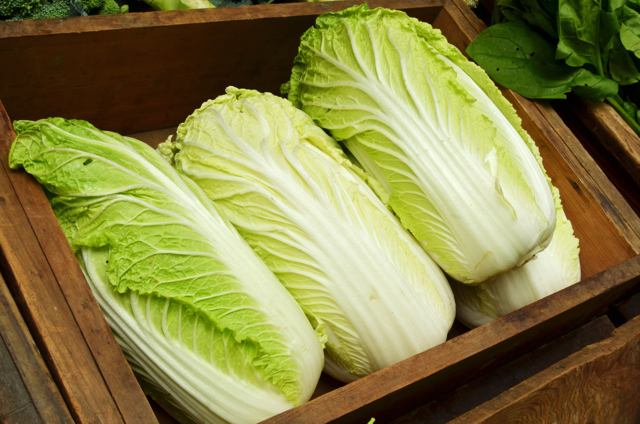 What Does It Mean to Dream about Cabbage?-Dreams Interpretation